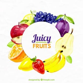 Frutas suculentas fundo