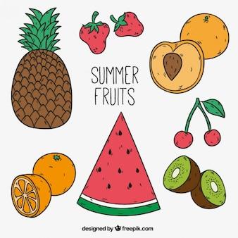 Frutos apetitosos verão