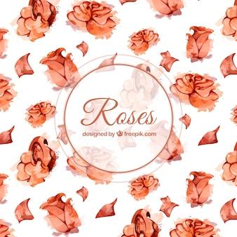 Fundo, aguarela, rosas