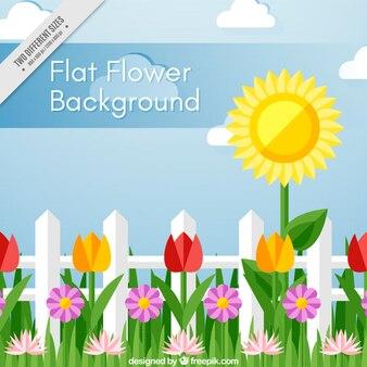 Fundo bonito com flores decorativas em design plano