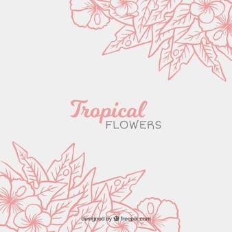Fundo bonito de folhas desenhadas a mão e flores