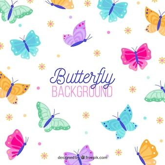 Fundo colorido das borboletas no projeto liso