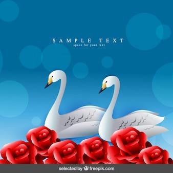 Fundo com cisnes e rosas