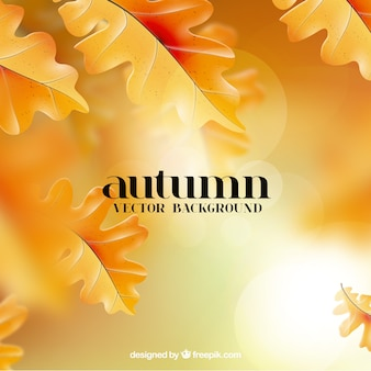 Fundo com folhas de outono douradas