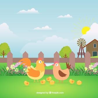 Fundo da exploração agrícola com galinhas agradáveis