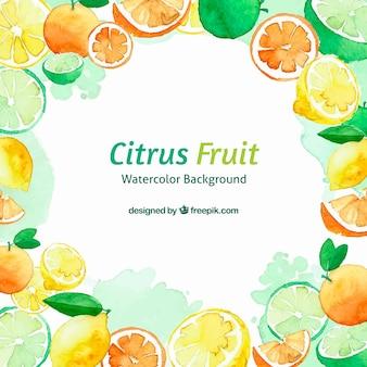 Fundo de aquarela de frutas cítricas