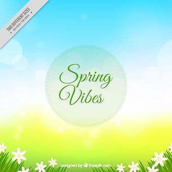 Fundo de Bokeh com flores da primavera