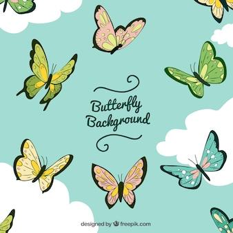 Fundo de borboletas e nuvens
