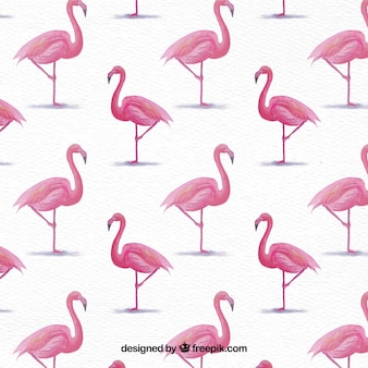 Fundo de flamingos de aquarela
