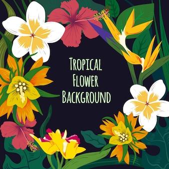 Fundo de flor tropical