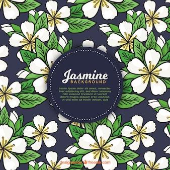 Fundo de Jasmim com folhas desenhadas à mão
