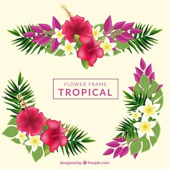 Fundo de moldura de flores tropicais