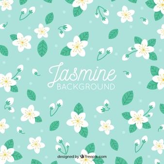 Fundo decorativo com jasmim