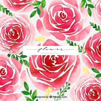 Fundo elegante com rosas de aquarela