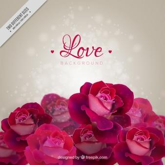 Fundo romântico com rosas