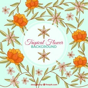 Fundo vintage de flores de laranja desenhadas à mão