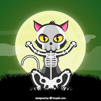 Gato de Halloween com esqueleto