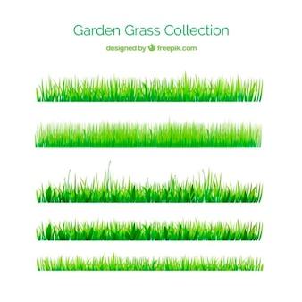 Grama verde para o seu jardim