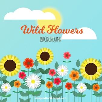 Grande fundo de céu azul e flores fantásticas