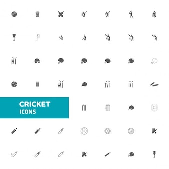 ícone Cricket set