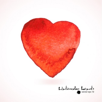 Ilustração da aguarela heartVector rosa