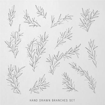 Ilustrações botânicas desenhadas à mão