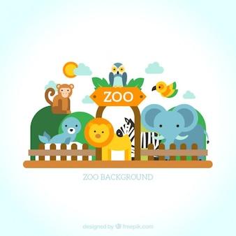 Jogo de animais selvagens no zoológico