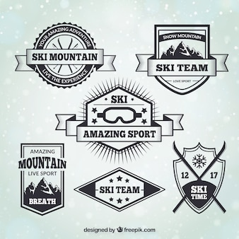 Jogo de emblemas de esqui estilo vintage