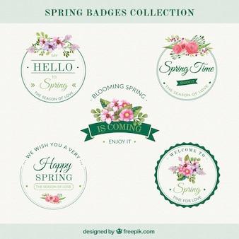 Jogo de etiquetas do vintage com flores