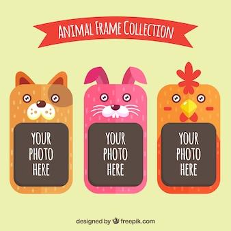 Jogo de frames amigáveis animais