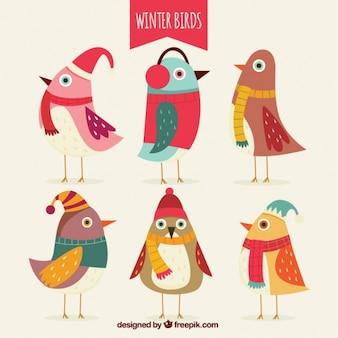 Jogo de pássaros coloridos com diferentes acessórios de inverno