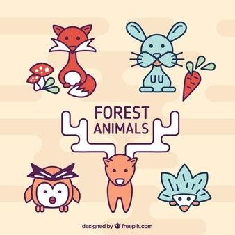 Lineal pacote de animais da floresta