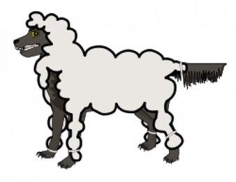 lobo em pele de cordeiro