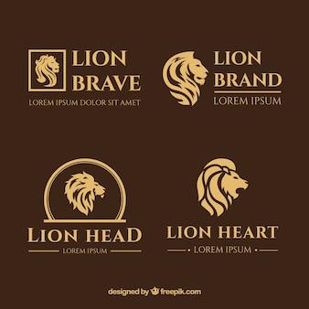 Logotipos de leão, estilo elegante com um fundo marrom