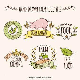 logotipos fazenda esboços com produtos frescos