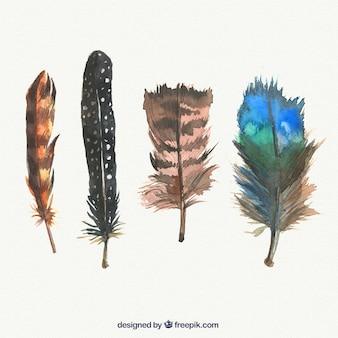 Mão abstrata pintada feathes embalar