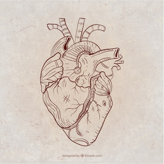 Mão coração steampunk desenhada