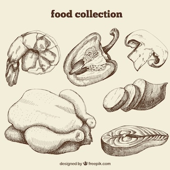 Mão de Recolha de Alimentos Desenhada