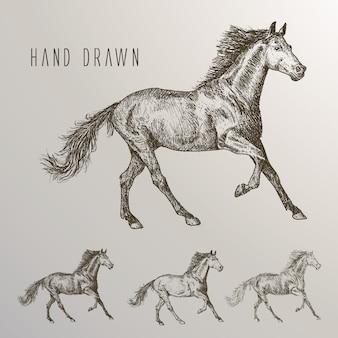 Mão desenhada cavalos coleção