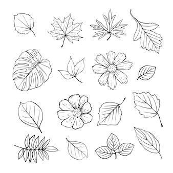 Mão, desenhado, flores, folhas