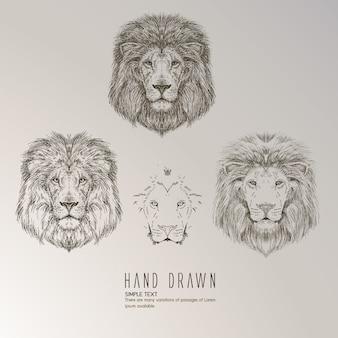 Mão, desenhado, leão, cabeça
