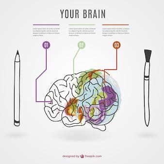 Mente criativa vetor infografia