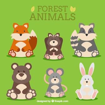 Os animais engraçados florestais sentados