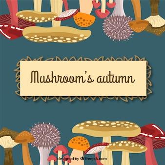 Outono de cogumelo