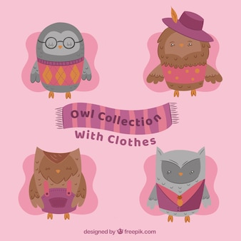Pack de quatro corujas bonitas com roupas