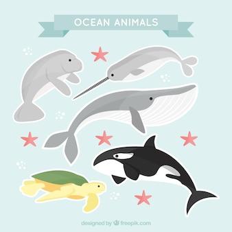 Pacote bonito de animais do oceano