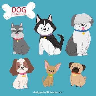 Pacote bonito de seis cães desenhados à mão