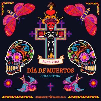 Pacote colorido de elementos mexicanos