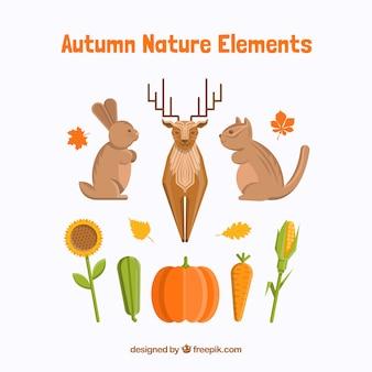Pacote da natureza e animais na estação do outono