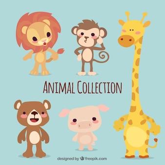 Pacote de cinco animais bonitos